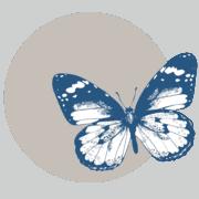 Sephirus-icon