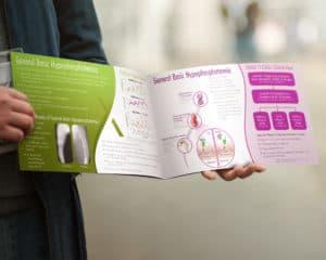 Pharma Booklet Design 2