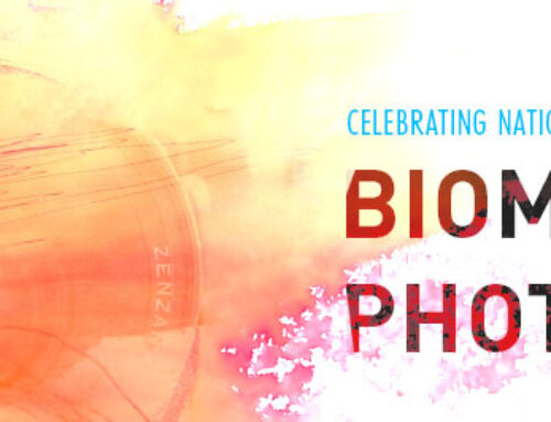 Celebrating National Photography Month with Biomedical Photography